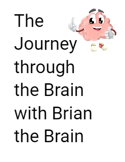 The Journey through the Brain with Brian the Brain Storybook Cover