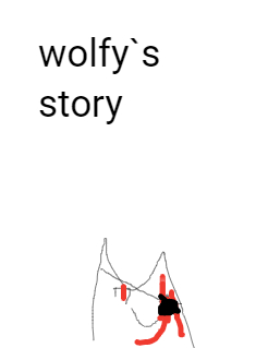 wolfy`s story Storybook Cover