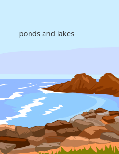 ponds and lakes Storybook Cover