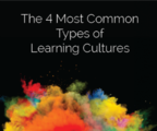 The 4 most common learning cultures2