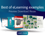 Elearning examples 300x250