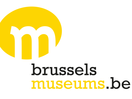 Brussels Museums - Romain Poirier