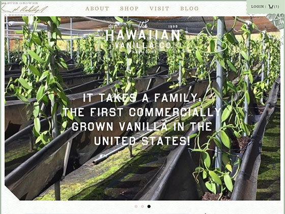 Hawaiian Vanilla - Eli Van Zoeren