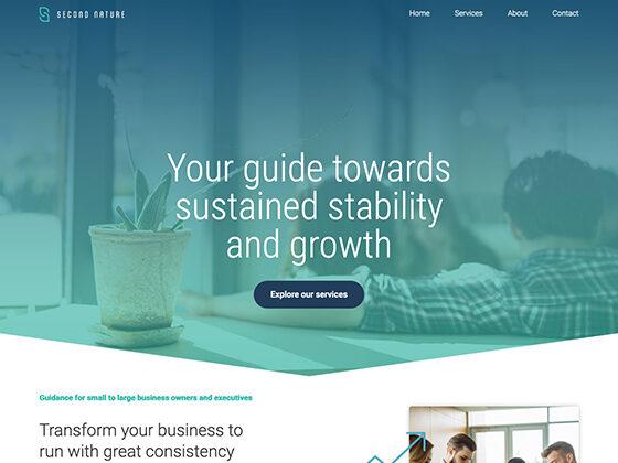 Second Nature Branding & Website Design - Antistatic Design