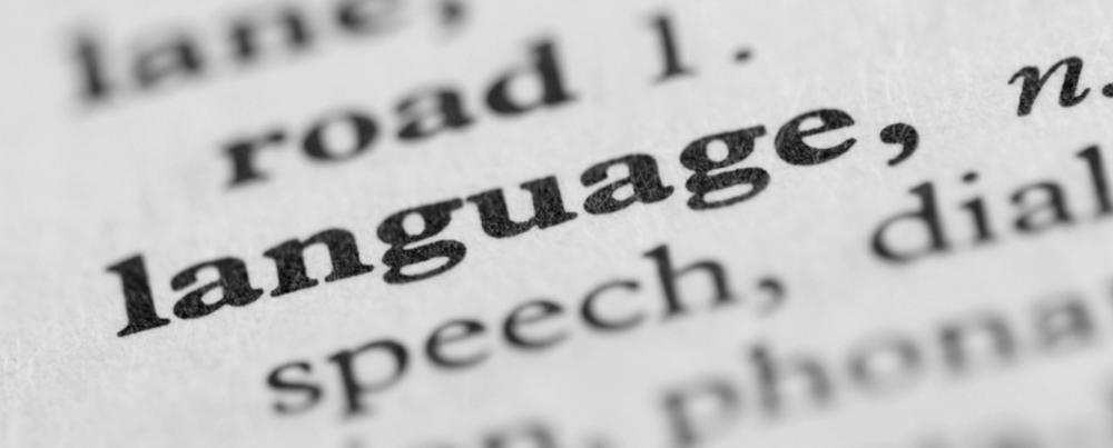Essay #1: The Language of Money