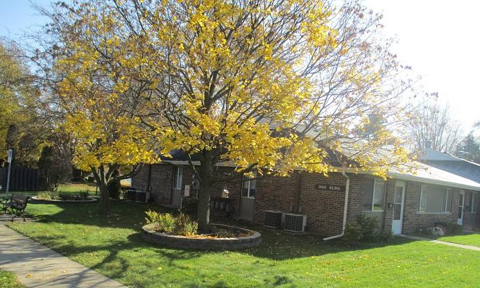 Rent Apartment Monticello 47960