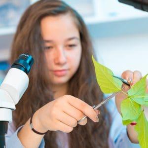 Biology Adolescence Education Photo