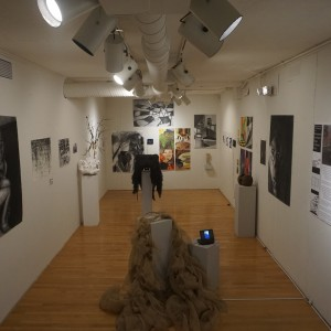 Picotte Student Gallery
