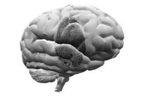 forensic psychology degree fingerprint on brian