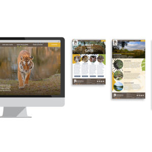 Logo and Website Design: Big Cat Rescue
