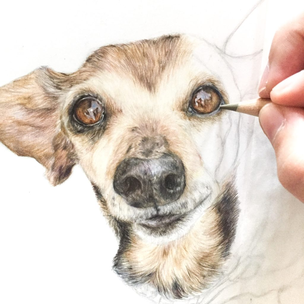 Kim Szkudlarek Alumni Gift Guide Pup Portrait