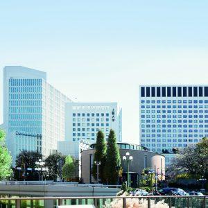 Sophia University in Japan