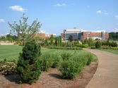 Pennsylvania State University-Main Campus image
