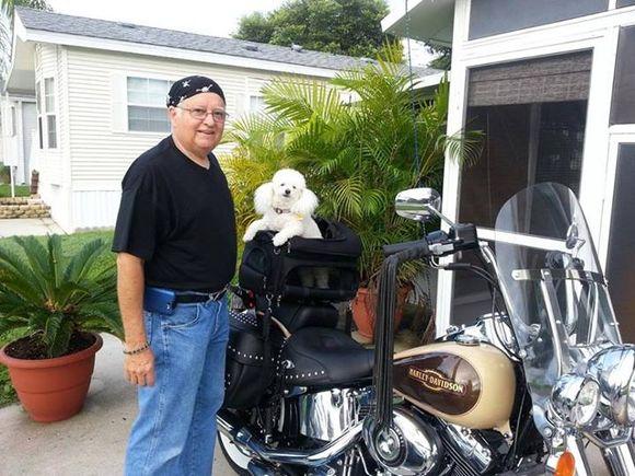 man next to dog poodle in harley davidson motorcycle
