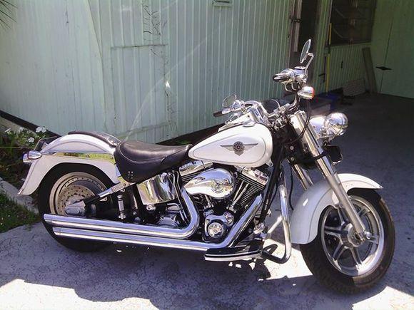 custom 2004 fatboy