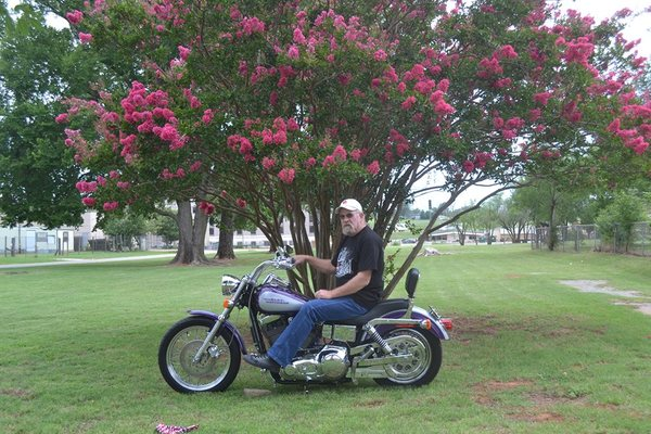 motorcycle under tree