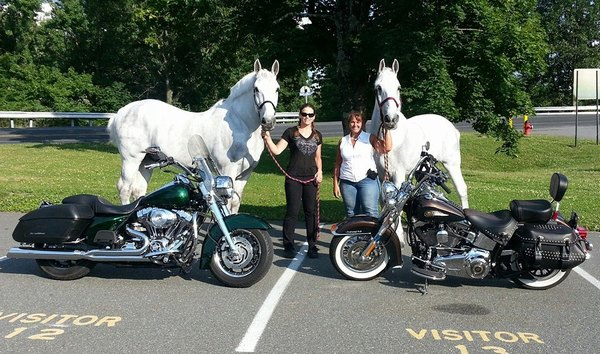 motorcycle horsepower