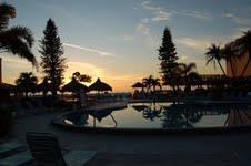 Dolphin Beach pool
