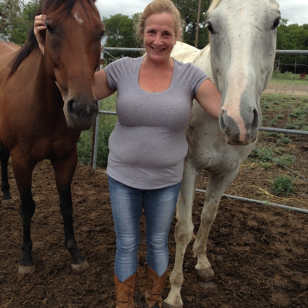 woman and two horses