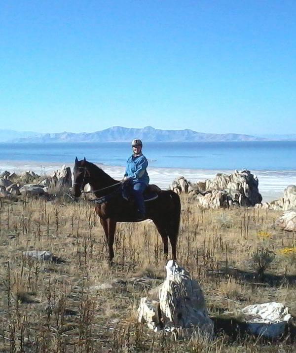 horse hiking