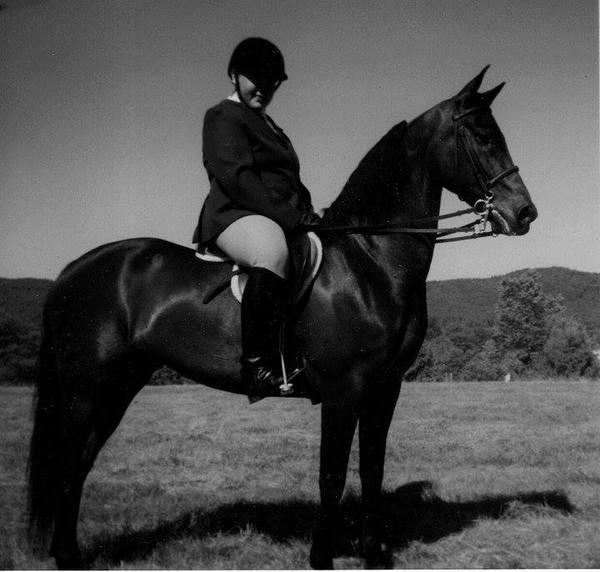 horsebck riding