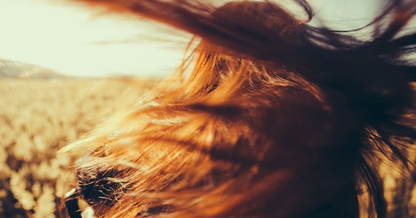 Freshen Up Your Writing With These 53 Awesome Adjectives To Describe Your Character's Hair!