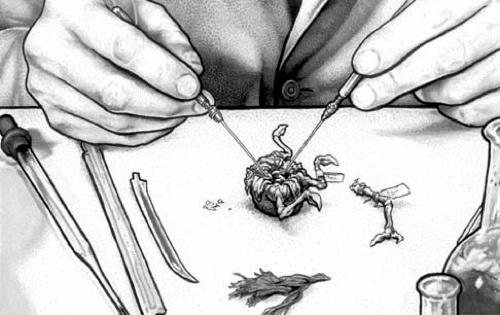 Autopsy drawing.jpg