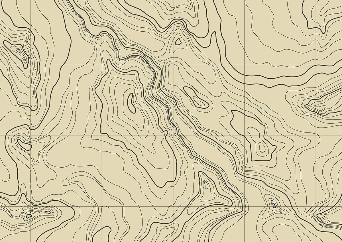 Brown Topography.jpg