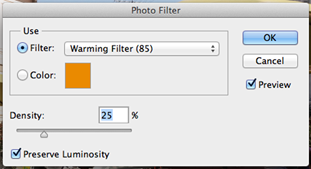 Photo Filter.png
