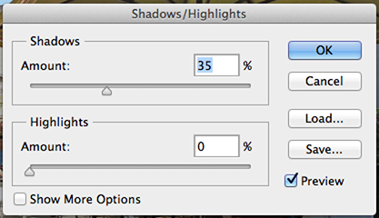 Shadows Highlights.png