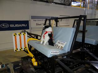 Subaru and the Center for Pet Safety conducted a collaborative crash test study to test the effectiveness of pet harnesses marketed with safety claims. Photo Credit: Center for Pet Safety