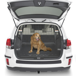 Dog Carrier Seperator