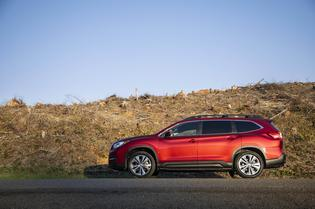 2019 Ascent Limited