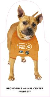 Inspired by the Union's legendary Sons of Ben team supporter group, Subaru of America and the Philadelphia Union team up to fill the stands with adoptable dogs cutouts in the absence of real-life spectators.