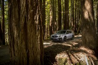 "Subaru Outback Named to Good Housekeeping ""Best New Family Cars of 2020"""
