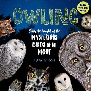 Middle Grades Science Book: Owling: Enter the World of Mysterious Birds of the Night, by Mark Wilson.