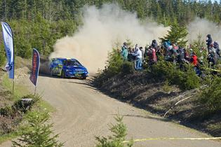 Oliver Solberg and Codriver Denis Giraudet speed by a spectator point in their 2019 Subaru WRX STI at the 2019 DirtFish Olympus Rally. Photo credit: Aaron Kathman / Subaru Motorsports USA