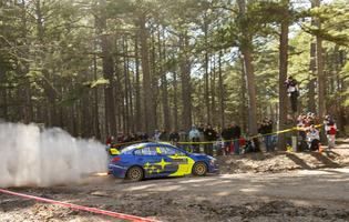 Oliver Solberg slides past a spectator area at the 2019 Rally in the 100 Acre Wood. Photo credit: Ben Haulenbeek / Subaru Motorsports USA