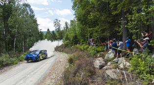 Crowds of New England Forest Rally fans watch David Higgins and Craig Drew roar past, sweeping the roads from first position overall.