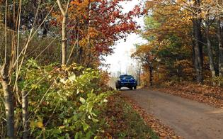 The American Rally Association calendar wrapped up at Lake Superior Performance Rally for the first time this year – bringing the ARA national championship field to one of the oldest and most scenic rallies on the U.S. calendar.