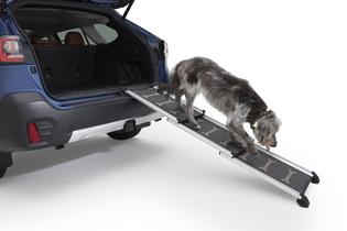 The pet-friendly gear and accessories equipped for Subaru vehicles ensure owners can take their cats, dogs and other furry companions on road trip adventures while guaranteeing maximum pet comfort.