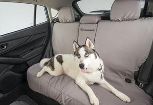 Subaru of America launched a new line of pet accessories designed to keep pets comfortable in their vehicles.