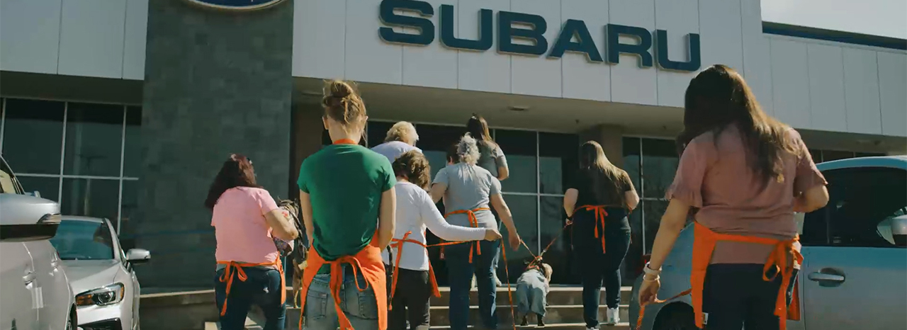 SUBARU OF AMERICA NAMED FIRST-EVER HONOREE OF ASPCA® CORPORATE COMPASSION AWARD<br />