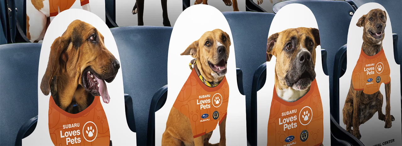 SUBARU OF AMERICA AND PHILADELPHIA UNION SHOWCASE ADOPTABLE SHELTER DOGS AT SUBARU PARK