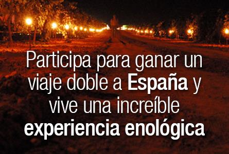 Viaje doble a España para disfrutar la Fiesta de la Vendimia Nocturna