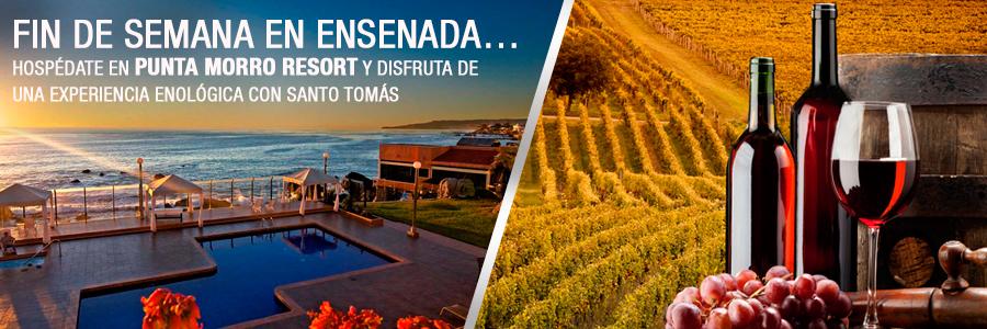 Viaja a Ensenada y vive una experiencia enológica