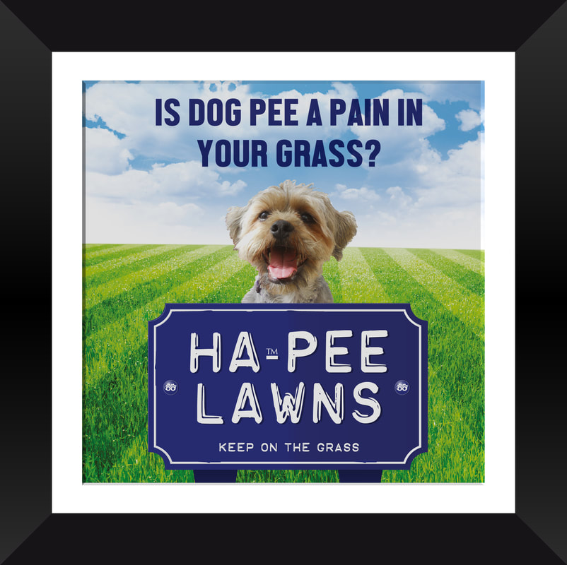 Ha-Pee Lawns Tonic for Dogs that weigh Between 8 and 12 Kilos