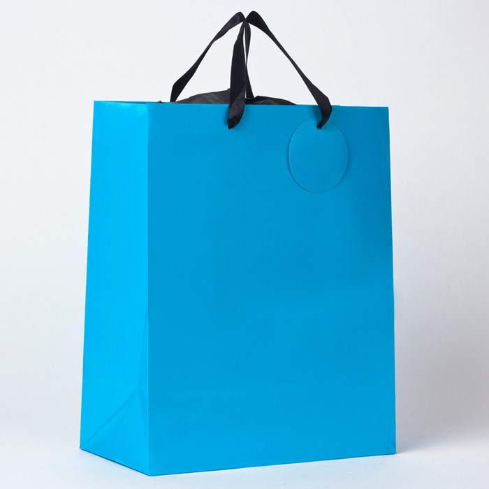 Gift Bags (5 Pack)