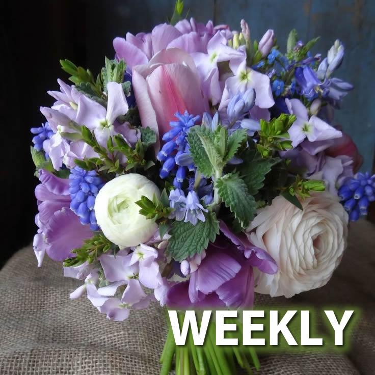 Season's Best Flower Club - Weekly
