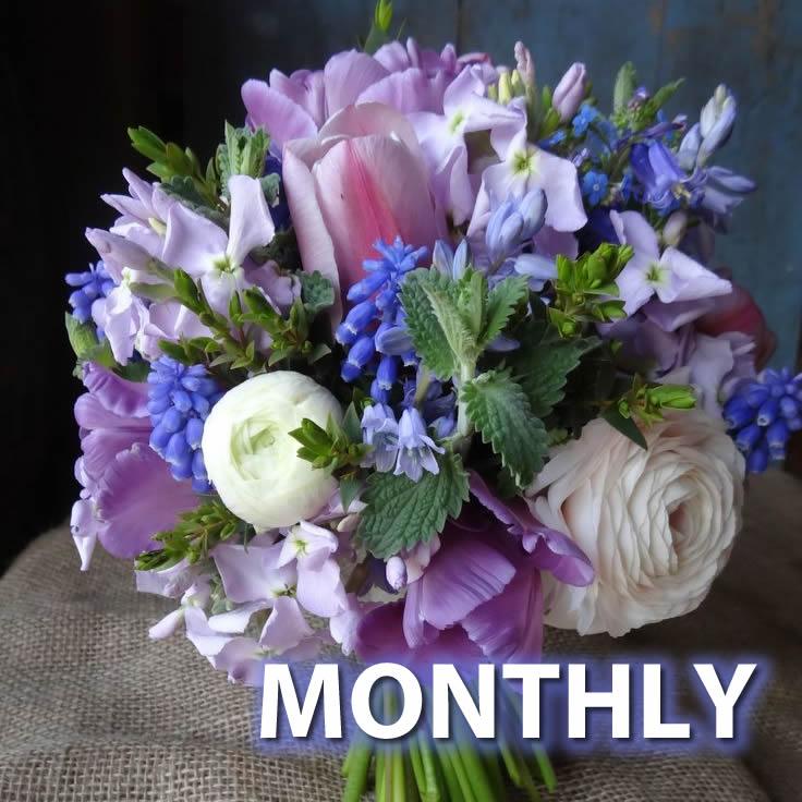 Season's Best Flower Club - Monthly